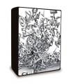 SYSTAT TableCurve 3D 4.0