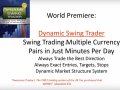 Dynamic Swing Trader by Netpicks